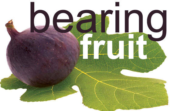 bearing-fruit