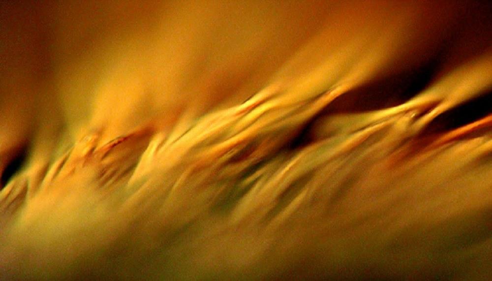 holy-spirit-fire-wind1