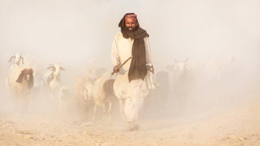 the_good_shepherd_by_zaghami-d6rzo8x